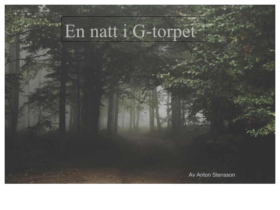 En natt i G-torp